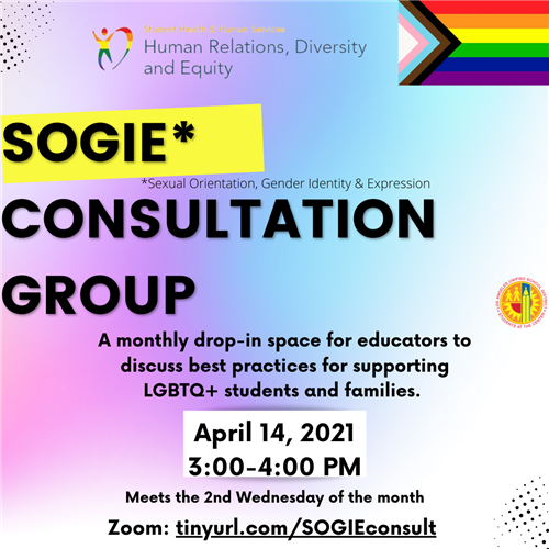 pink and blue flyer with sogie consultation group info