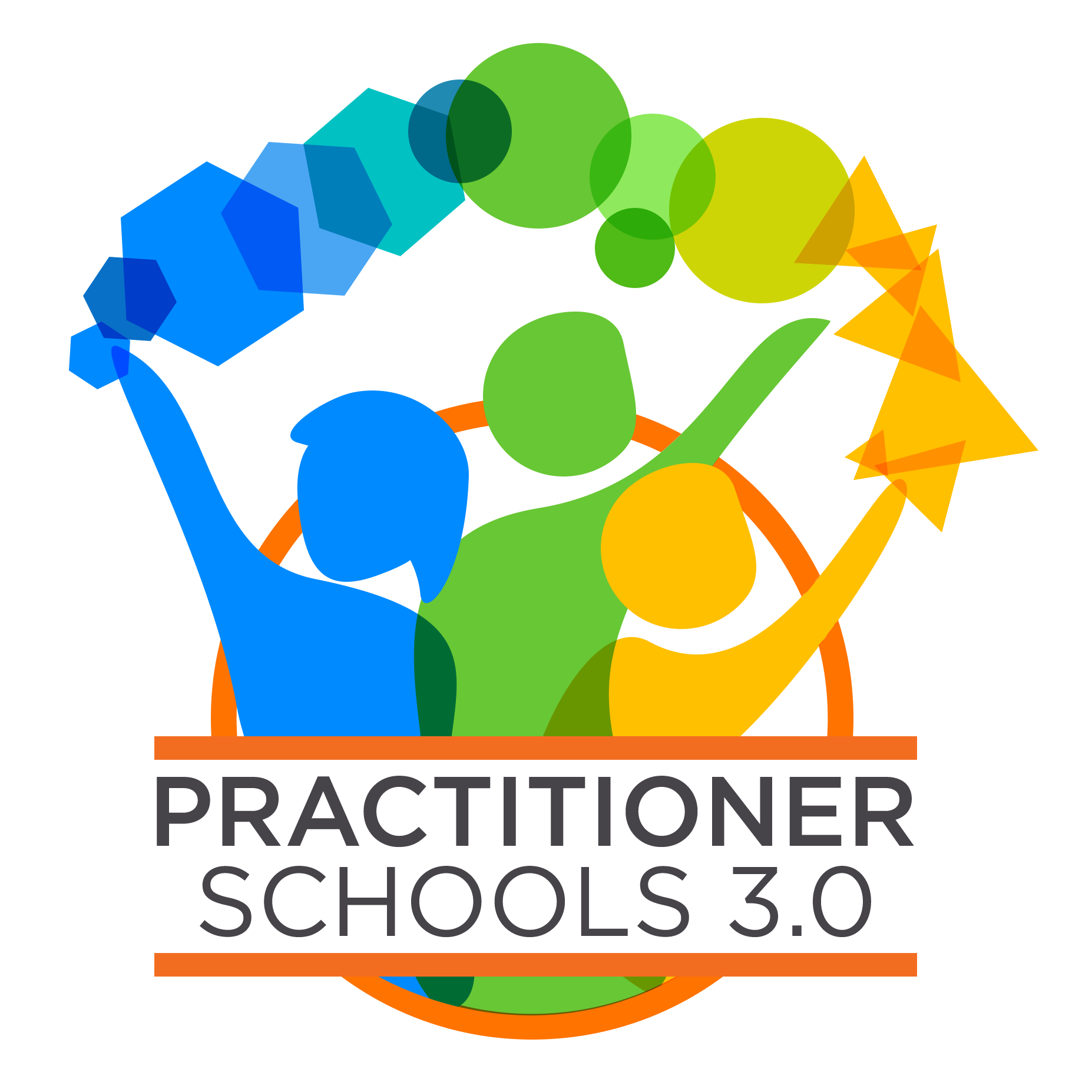 Practitioner Schools 3.0: Innovative Designer