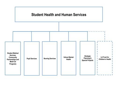 Student Health And Human Services  Organization Chart