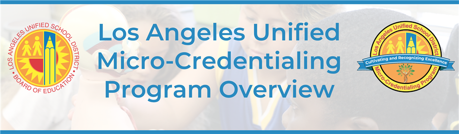Micro-Credentialing Program Overview Banner