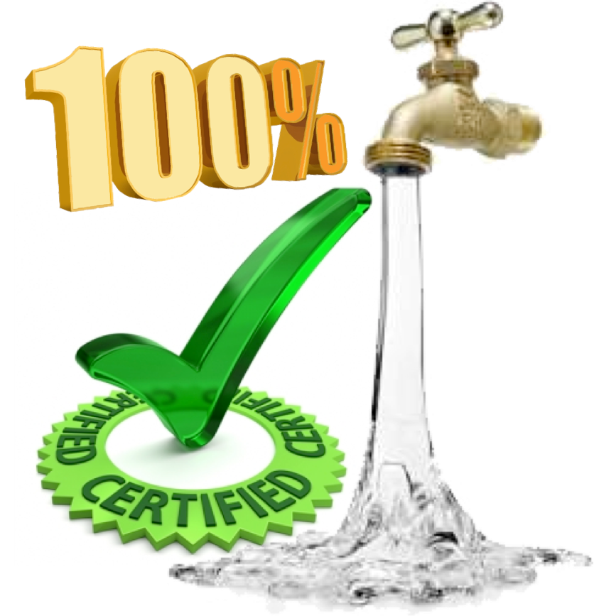 100% Certified Flushing Records