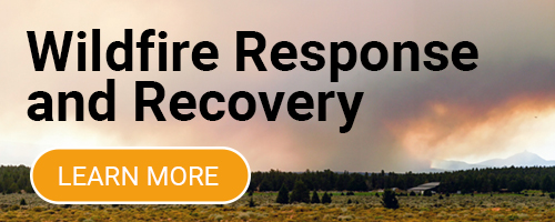 Wildfire Response and Recovery