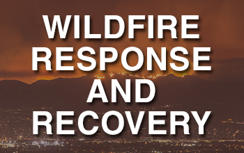 Wildlife Response and Recovery_btn