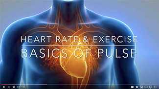 "Cardio Training - ""Heart Rate and Pulse Basics"""