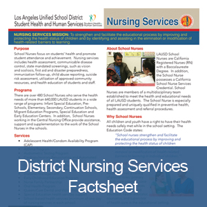 District Nursing Factsheet